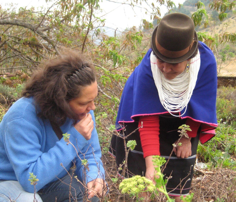 Mit Mama Miriam im Heilgarten. Reservat Misak, Kolumbien